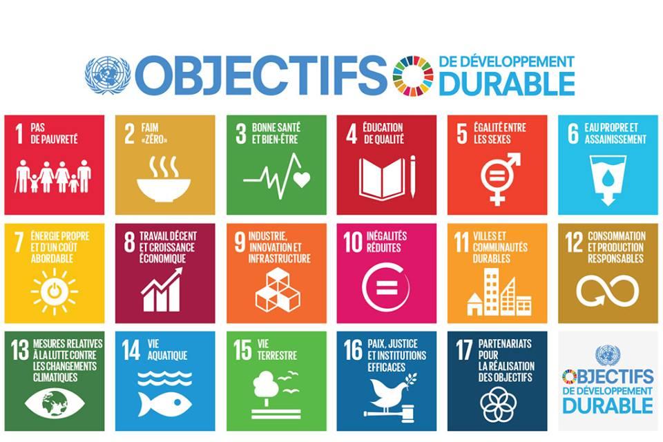 Découvrez les 17 Objectifs du Développement Durable de l'ONU