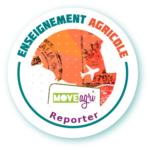 Deux nouveaux Open badges pour valoriser les compétences développées en mobilité